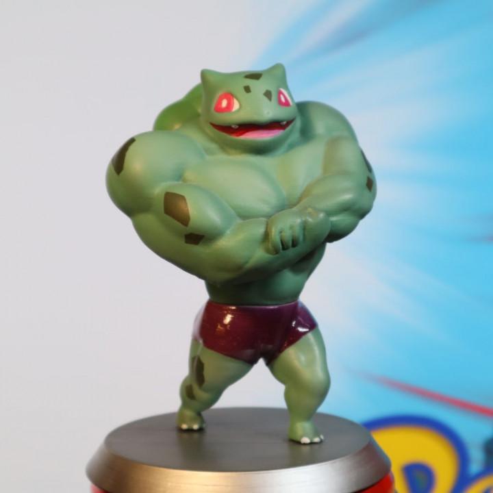 妙蛙种子肌肉版
